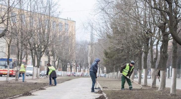 Владимирский субботник длиной в полгода: мусор с осени до сих пор не убрали