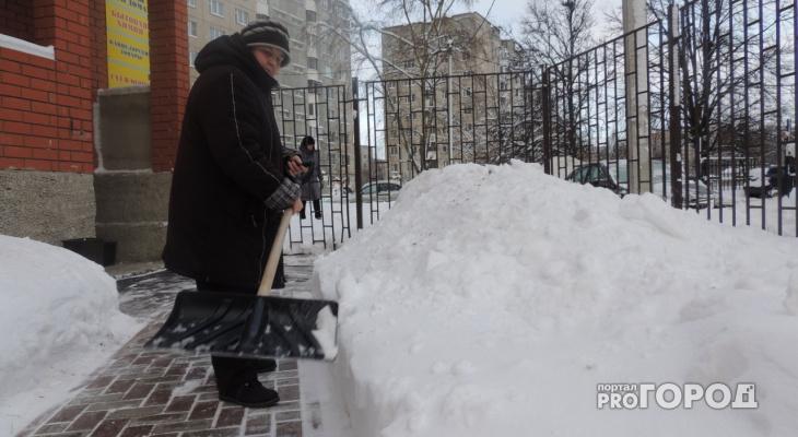 Владимирский дворник - об аномальном снегопаде, цветах и хамстве
