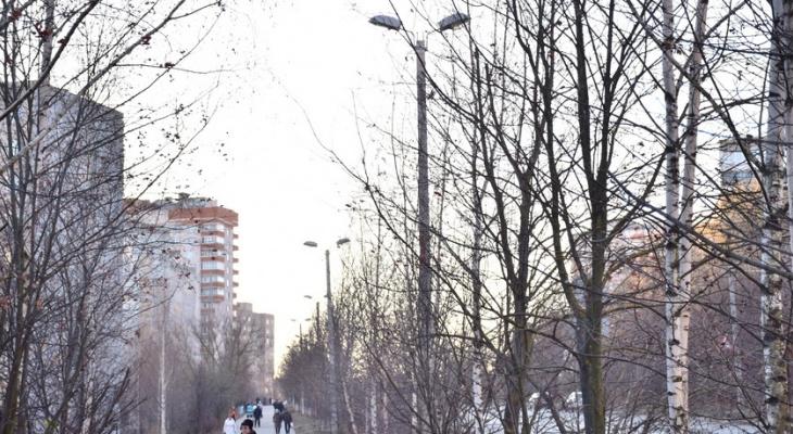 Во Владимире построят новые участки сетей уличного освещения: где именно