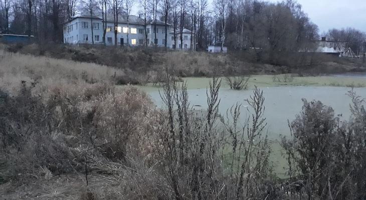 В Кольчугино девятилетний мальчик провалился под лед