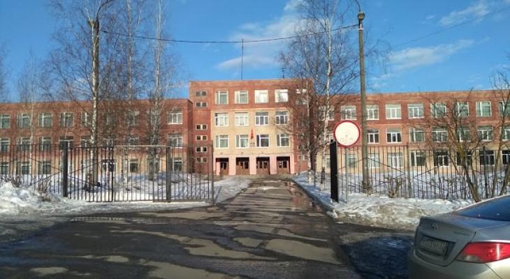 Вспышка пневмонии во владимирских школах: еще шесть заболевших