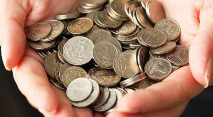 Копейка рубль бережет: владимирцам предлагают обменять мелочь без комиссии
