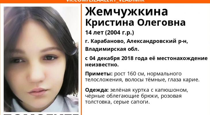 Во Владимирской области пропала 14-летняя девочка