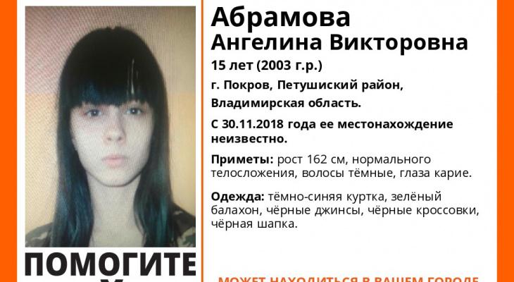 Во Владимирской области без вести пропала 15-летняя девушка