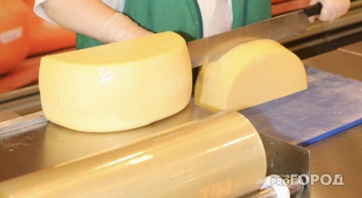 Опасный сыр: что эксперты советуют покупать владимирцам