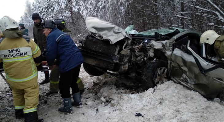 Страшное лобовое столкновение во Владимирской области: есть пострадавшие