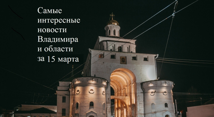 Владимир за день: смертельный пожар, массовая драка на Масленице и бездомные собаки