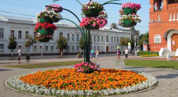 Мэрия сэкономит на городских клумбах и цветниках около пяти миллионов рублей