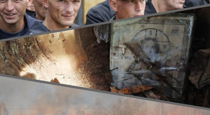 Владимир за день: алтарь в дереве, портрет преступника и шокирующая статистика