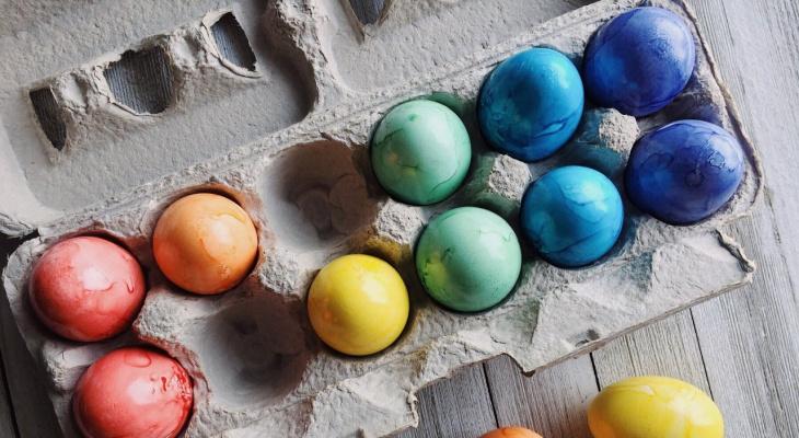 В Роскачестве назвали самые свежие куриные яйца России