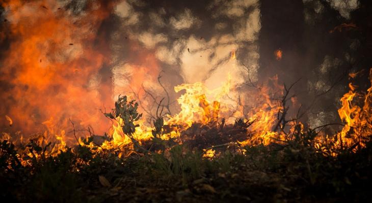 Владимирцев предупреждают о надвигающейся на регион жаре