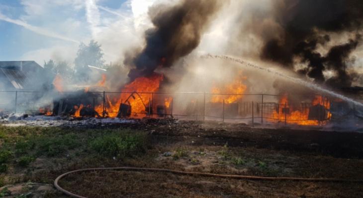 25 человек тушили автомобили и ГСМ в Камешковском районе