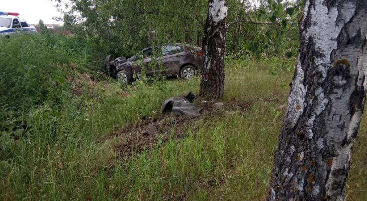5 человек погибли на дорогах региона за неделю