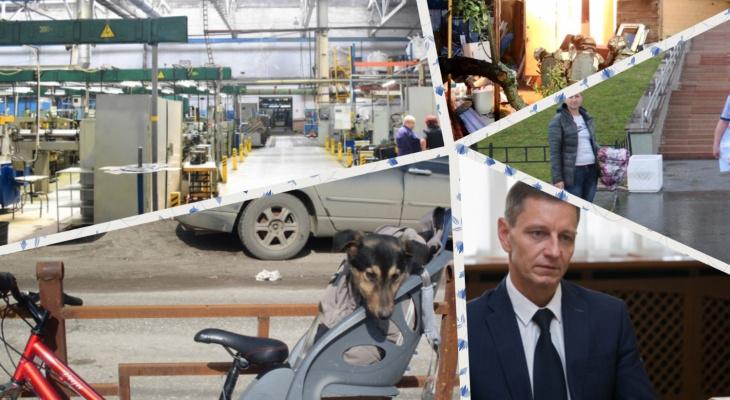 Владимир за день: пикетчики из Оргтруда, террористы и кража года