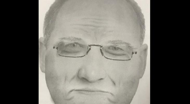 Берегите детей: по улицам Владимира бродит педофил в очках!