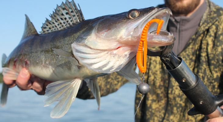 Владимирские рыбаки рассказали, где лучше улов