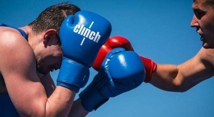 Международный день бокса пройдет во Владимире