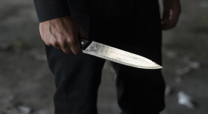 Владимирца, зарезавшего двух мужчин из-за замечания, будут судить