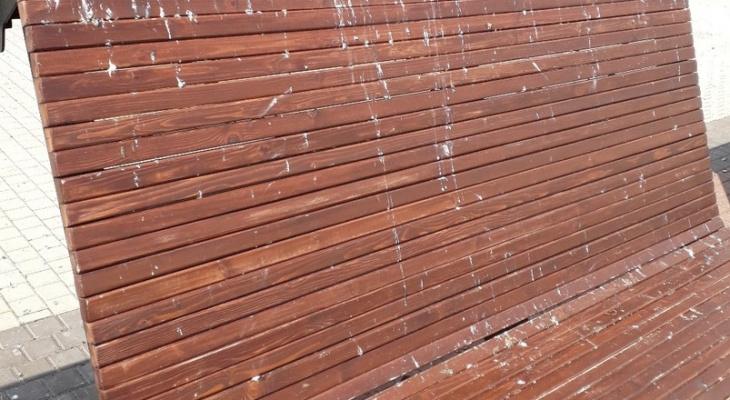 Фото дня: Театральная площадь погрязла в голубином помете