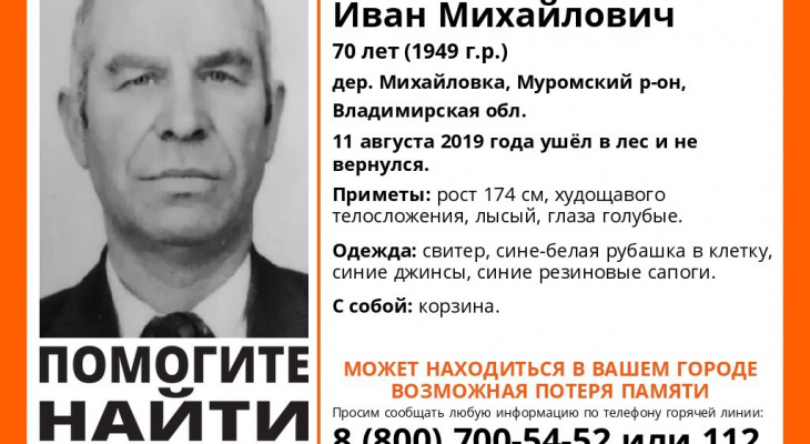 Владимирцы, нужно помочь: без вести пропал дедушка с корзинкой