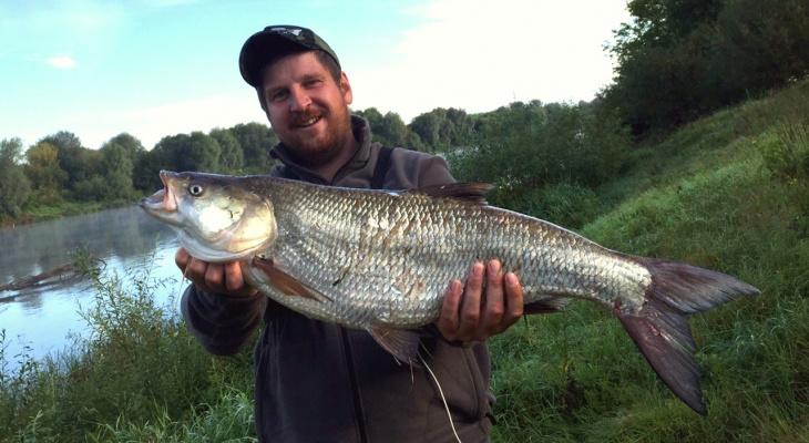 Владимирский рыбак поймал в Клязьме пятикилограммового хищника