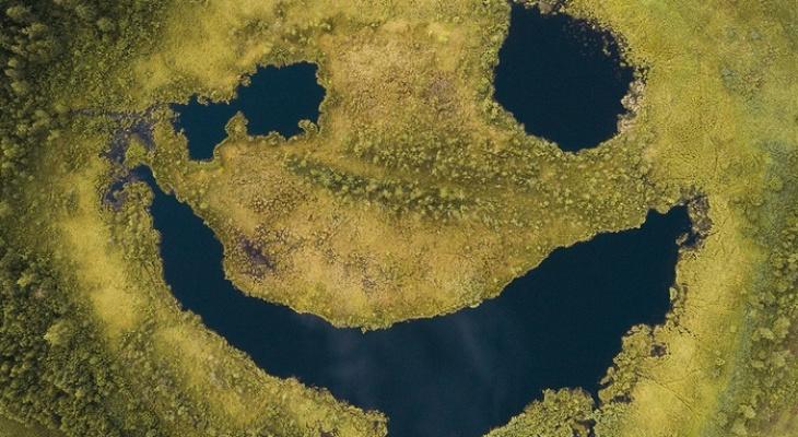 """Уникальное фото природного явления во Владимирской области: болото """"улыбнулось""""!"""