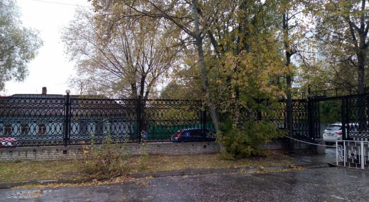 Погода во Владимире на 25 сентября: будут ли осадки?