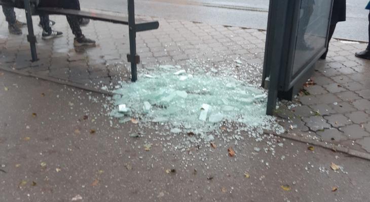 Разбитая на осколки: на «Черёмушках» разгромили остановочный павильон
