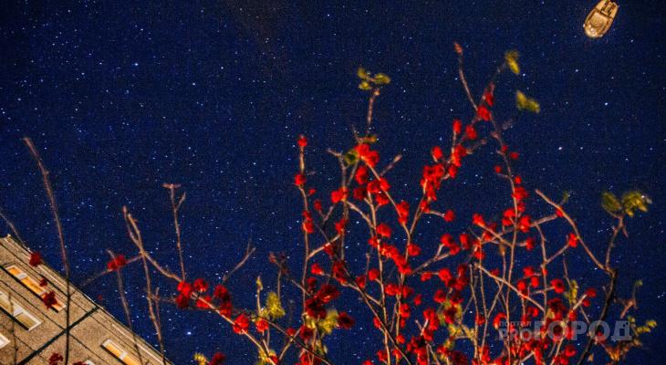 Необычное астрономическое явление смогут сегодня наблюдать владимирцы