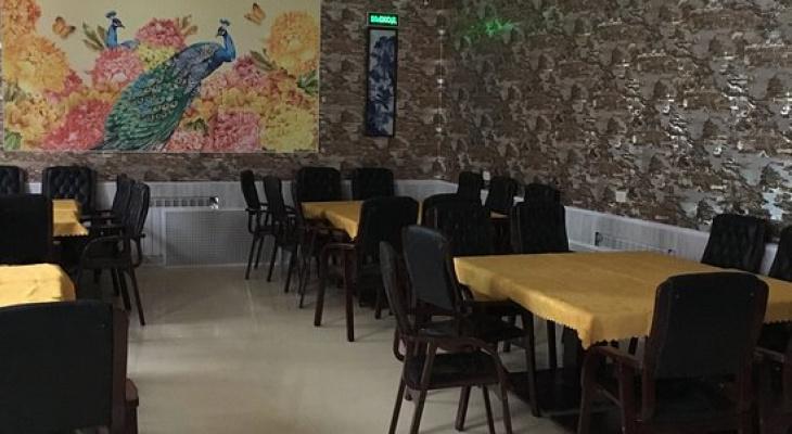 Кафе в центре Владимира попалось на жуткой антисанитарии