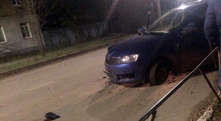 В Муроме водитель сбил женщину, прогуливающуюся с собакой