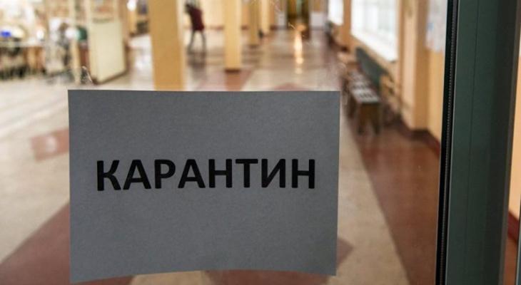 В школе №42 ввели карантин из-за вспышки пневмонии во Владимирской области