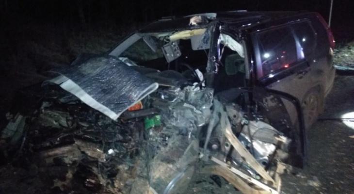 В Кольчугинском районе во время жуткой аварии вспыхнула фура
