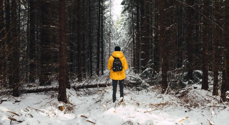В лесах Меленковского района бесследно пропал мужчина