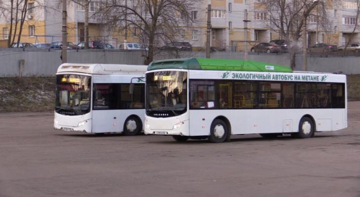 Во Владимирской области сгорели 12 автобусов