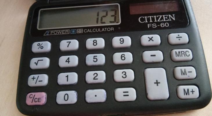 Что говорят владимирцам цифры?