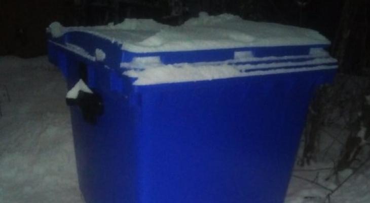 Новые мусорные контейнеры вызвали недовольство владимирцев