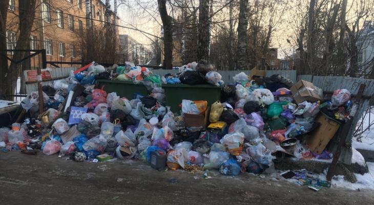 """Владимирские дворы продолжают """"тонуть"""" в мусоре"""