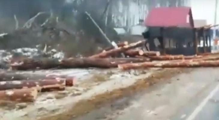 Пункт назначения: в Меленковском районе опрокинулся лесовоз