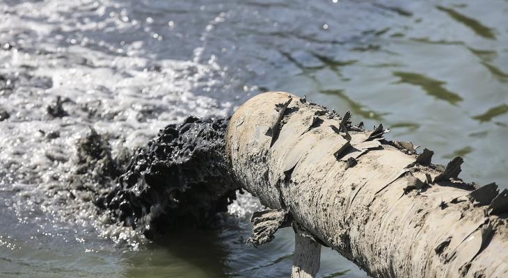 Парк-отель во Владимире загрязнял озеро сточными водами