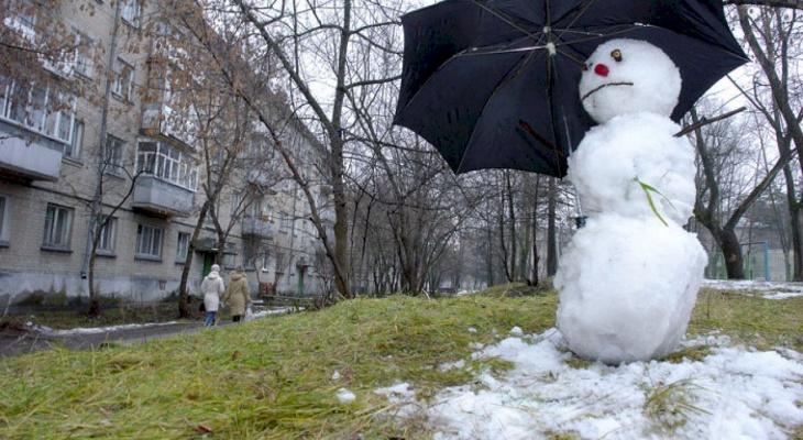 Гидрометцентр: во Владимир вернется аномальное тепло
