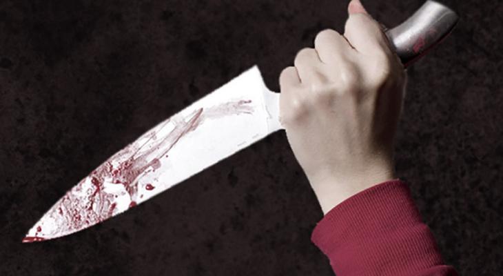 В Киржаче пенсионерка жестоко зарезала свою подругу
