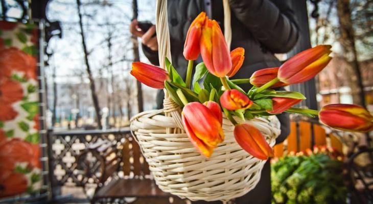 Чем занять себя на длинных выходных: афиша на 8 марта во Владимире