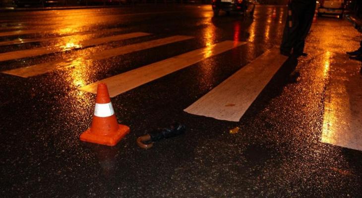 Ночью в Загородном парке насмерть сбили пешехода