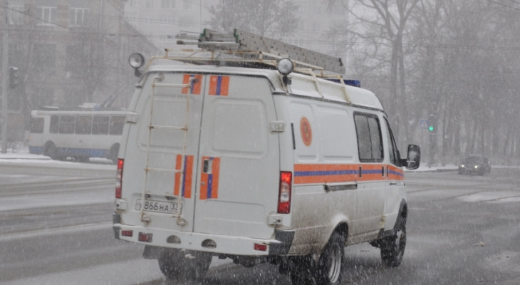 Владимирцев через громкоговорители просят остаться дома