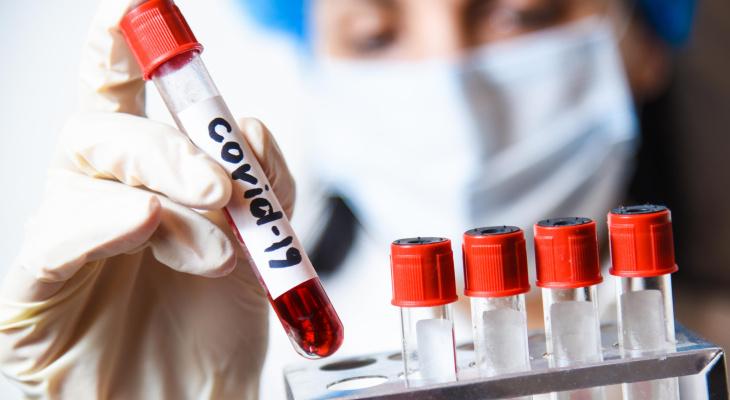 Всех владимирских пациентов с ОРВИ проверят на коронавирус