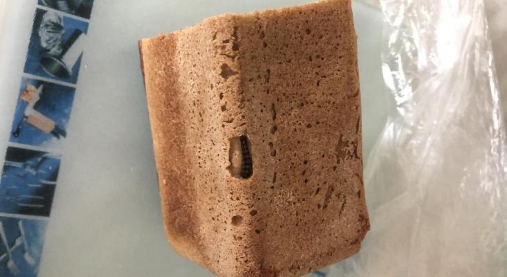 Червивый хлеб и прогнившие овощи: какие мерзости могут скрываться в еде?