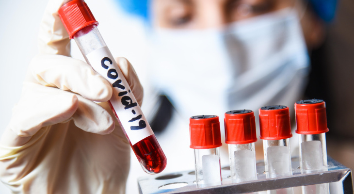 Во Владимирской области выявили еще 51 случай коронавируса