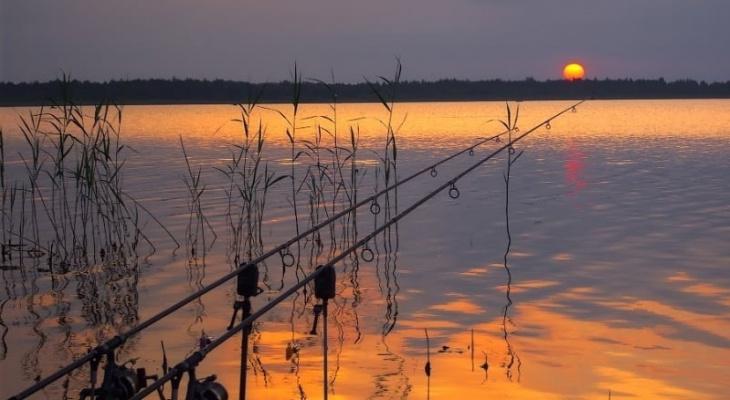 В Собинском районе сторож частного пруда застрелил подростка