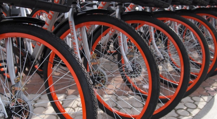 Во Владимире открыли первый в городе велошеринг